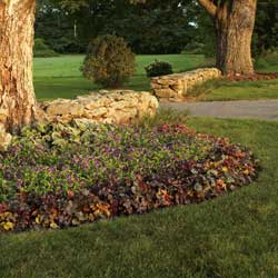 Groundworks Landscaping Tips